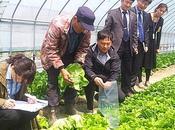 contrôle produits agro-alimentaires Corée