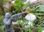 GUERRE JARDIN! LUTTE FINALE ACHARNEMENT! Senaq garden