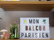 Balcon Parisien jardinerie ligne style cadeau dedans)