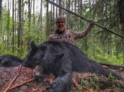 chasseur ours avec lance, vidéo choque Canada