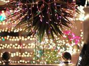 photos thème Noël.