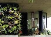 DECO Planchonella Dream House!