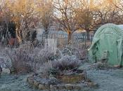 nouveautés 2017 jardin d'Ecolo-bio-nature