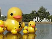 Udon-Thani Horloge fleurs prolifération canards