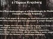Espace KRAJCBERG exposition nouvelle partir Février 2017 Parcours Amazoniens