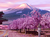adresses privilégier pendant escapade Japon
