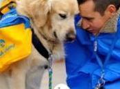 Carrefour aide l'association Handi'Chiens éduquer chiens d'assistance pour enfants handicapés