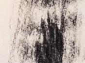 Maud Thiria, Brindilles (extraits)