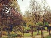 Dormir dans bois Parc Belle