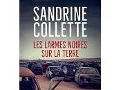 Sandrine Collette larmes noires terre