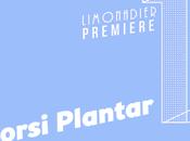 PREMIERE Dorsi Plantar
