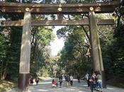 Balade nippone Meiji-jingu