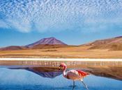 Désert d'Atacama: Comment bien visiter?