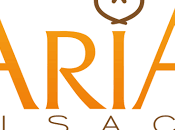 international pour l'ARIA Alsace multiples initiatives favorisent l'export