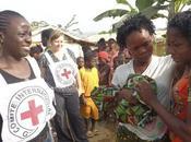 trois principes base l'action humanitaire CICR