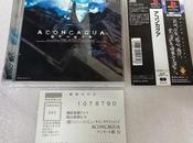 (PS1) Aconcagua Survival Horror