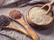 quinoa Priméal Bolivie, grain protégé