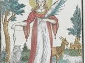 132/313 Solange Perséphone