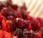 Casher BIO: Cranberry Baies Goji: Battle