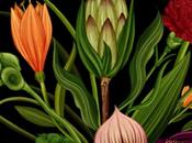 cycle fleurs