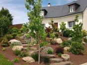 Astuces pour entretenir jardin terrasse