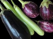 truc pour aubergines absorbent moins d'huile d'olive