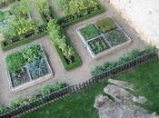 Immersion dans jardins Moyen-Age