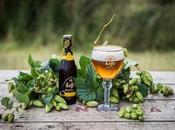 Nouveau Leffe Royale Ella, nouvelle bière d'exception Édition Limitée