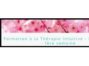 Devenez Thérapeute Intuitif