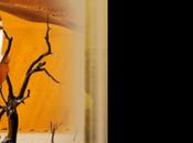 fond blog avec bannière kirikou
