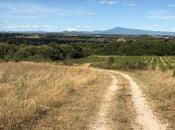 Carte postale chez #Gard #Occitanie