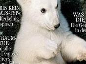 Knut l'ours aussi célèbre Cruise