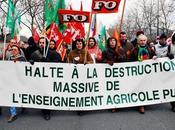 Manifestation contre destruction l'enseignement agricole public