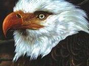 Chronique disque pour Muzzart, Hawk Howling Mogwai