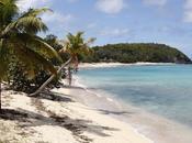 Martinique Guadeloupe manque concurrence comme origine crise