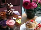 Match cupcakes: Berko Cupcakes