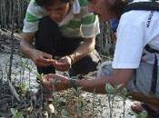 Gulli mobilise pour Journée Mondiale Terre