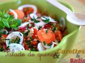 Salade Quinoa carottes, radis oignons nouveaux