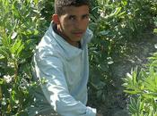 dans petit village Maroc l'histoire Bachir