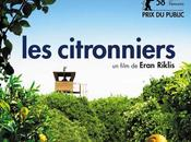 Citronniers