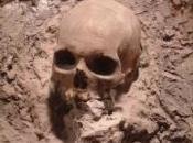 fossile d'homme Néandertal retrouvé sous