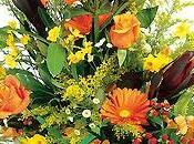 Bouquet Interflora HAVANE
