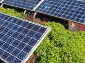 L'Algérie construire 2010 centrale solaire mégawatts