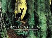 DAVID SYLVIAN, nouvel album Poin non-retour.
