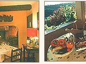 Restaurant Grimaud découverte Vins selon Coteau Fleuri