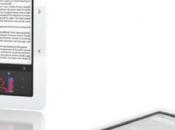 Lecteurs ebook 2010, l'année grand public
