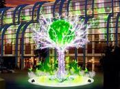 L'acteur Samuel Bihan donnera coup d'envoi illuminations Noël Forum Halles