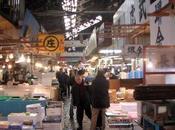 Marché poissons Tsukiji