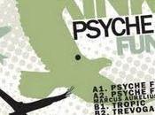 KiNK Psyche Funk (2009)