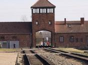 Auschwitz-Birkenau lycéens Saint-Maur voyage contre négationnisme